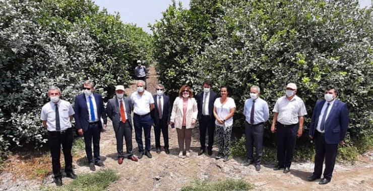 TARSİM'den Adana Turunçgil Üreticileri Birliği Başkanı'na ziyaret