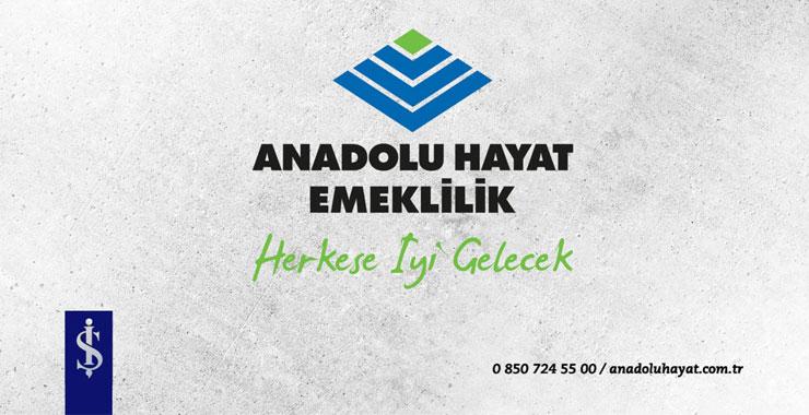 Anadolu Hayat Emeklilik'te yeni Genel Müdür Yardımcısı Necdet Cem Özcan oldu
