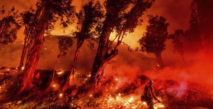 Sigortacılar için orman yangınları yeni normal olabilir
