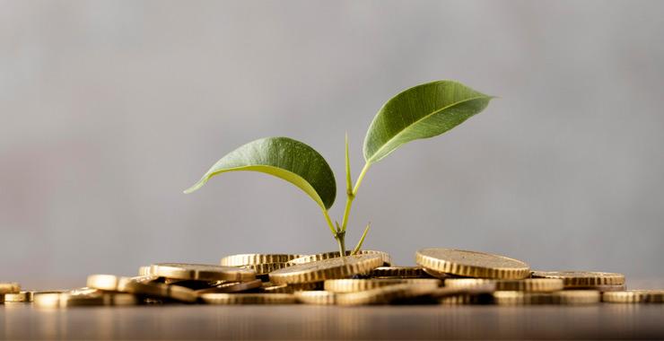 BES toplam fon büyüklüğü 162 milyar liraya yaklaşıyor